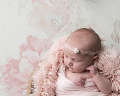 newborn blush pink